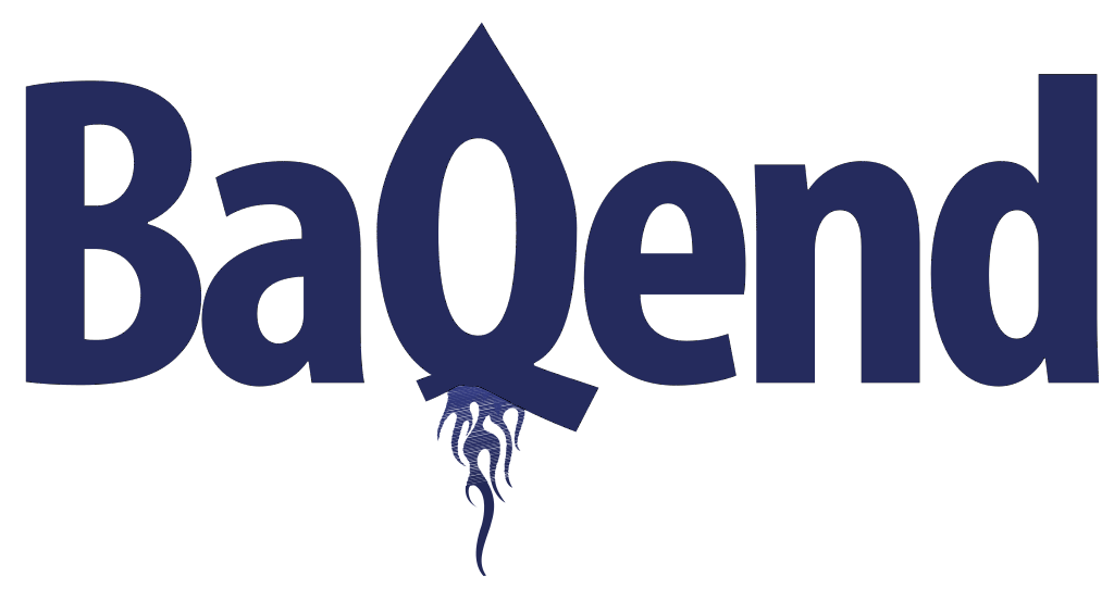baqend, a portfolio company of sts-ventures